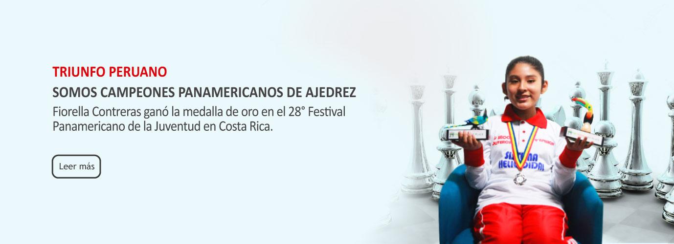baner-fiorella-panamericano-2017